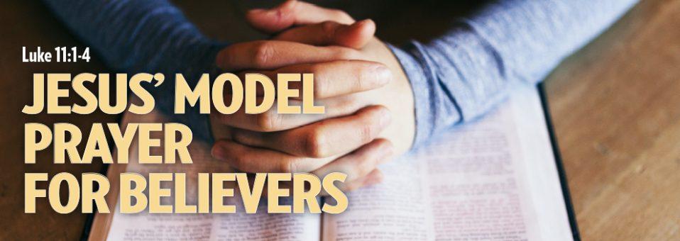 The Christian Journal October 2017